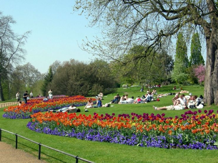Enjoying Springtime in Hyde Park