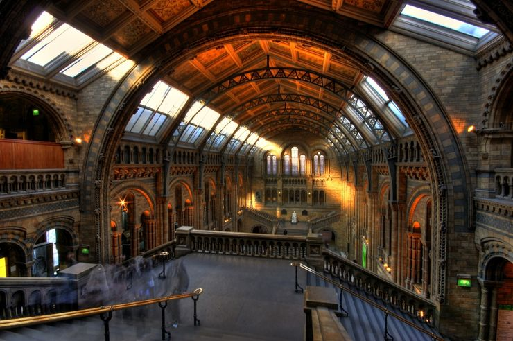 Entrance hall of the Natural History Museum