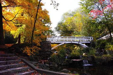 Fall colors add to a very picturesque and serene spot in Parc Jean Drapeau