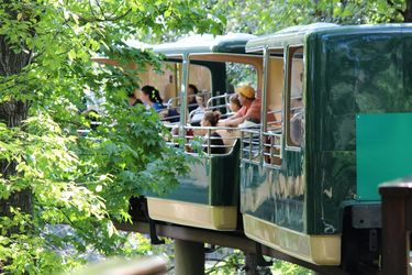 Exploring the Bronx Zoo from the Wild Asia Monorail