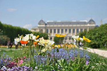 Beautiful displays of flowers at Jardin des Plantes with the Musee National D'Histoire Naturelle in the background