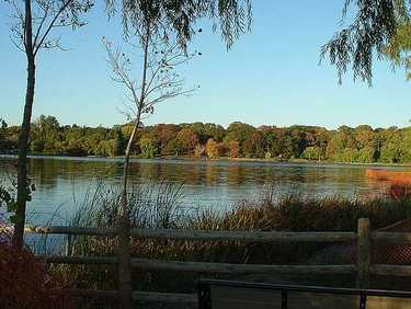 Grenadier Pond in High Park