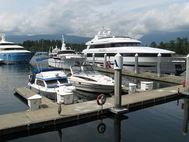 A Heron Stands Guard over Luxury Yachts  at Vancouver Harbour