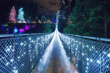 Canyon Lights at the Capilano Suspension Bridge
