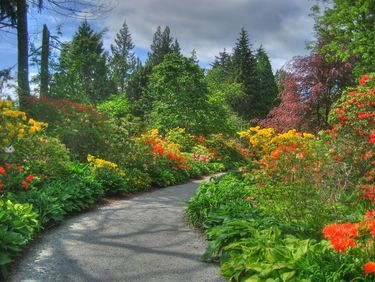 Beautiful Gardens in Stanley Park
