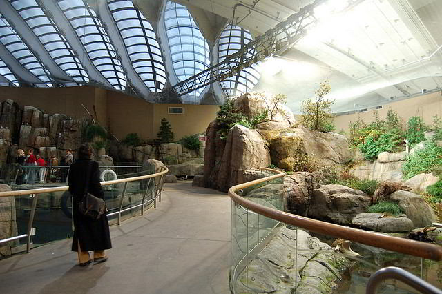 Inside the Montreal Biodome