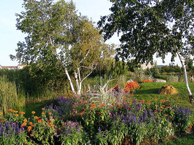 Perennials and trees in Parc Jarry