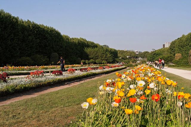 Strolling along long rows of flowers in the Jardin de plantes