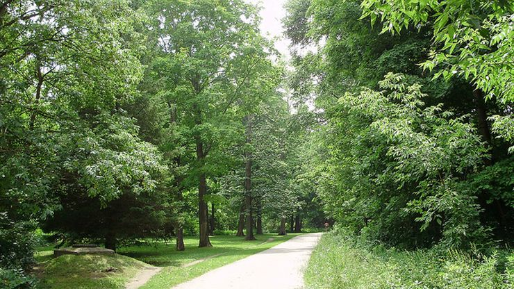 Try our Toronto Greenspace Walking Tour for a peaceful break from the busy city