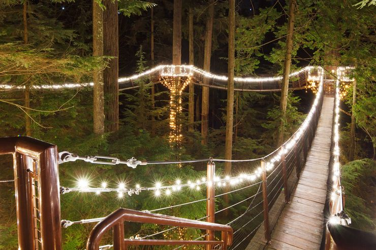 Canyon Lights Event at the Treetops Adventure