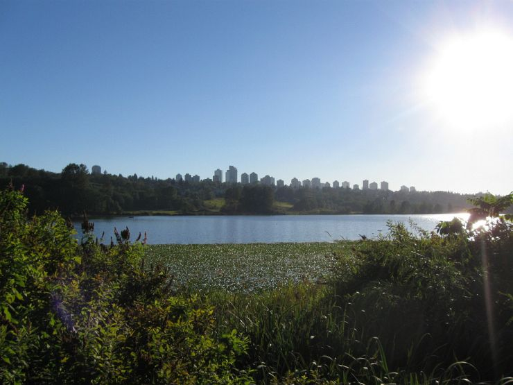 View across Deer Lake Park with downtown Burnaby in the distance