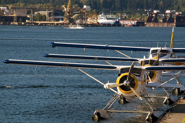 Harbour Air Seaplanes lined up at the dock